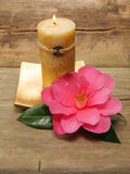 Feng Shui candle and camellia. Flower against a background of rustic wood stock photos