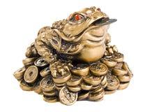 Feng Shui Frog Stock Image