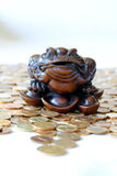 Feng Shui Frog Royalty Free Stock Images