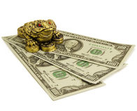 Feng Shui frog Stock Images