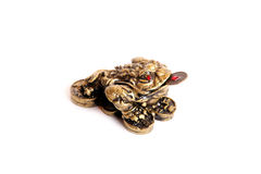 Feng shui frog. A bronze feng shui frog with a coin in its mouth isolated Stock Image