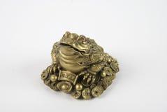 Feng shui frog royalty free stock image
