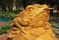 Feng Shui frog hold coin in the mouth. Sitting on money mound royalty free stock image