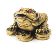 Feng Shui Frog stock photo
