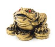 Feng Shui Frog Stock Photo