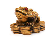 Feng shui frog, a symbol of China Stock Image