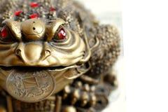 Feng Shui - groda med myntet Fotografering för Bildbyråer