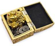 Feng Shui-kikker op borst met muntstukken Royalty-vrije Stock Foto