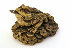 Feng Shui Money Toad Royalty Free Stock Images