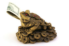 Feng Shui Money Toad with one hundred dollars. In mouth isolated on white background Royalty Free Stock Photos