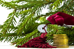 Feng Shui: one coin and the key on the background branches fir g Stock Photography