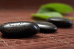 Feng Shui Scene. A pebble and leaves give a natural tranquil scene realting to feng shui royalty free stock image