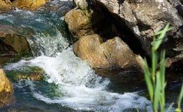 Feng Shui stenarna i vattnet Arkivbild