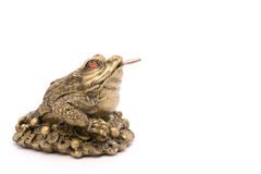 Feng shui toad with a coin Royalty Free Stock Images