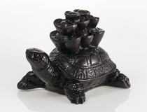 Feng Shui  Turtle. Carrying money Royalty Free Stock Photos