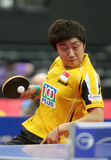 FENG Tianwei Royalty Free Stock Photography