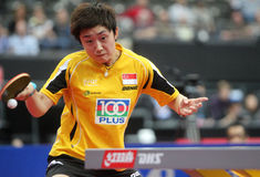 FENG Tianwei Stock Photography