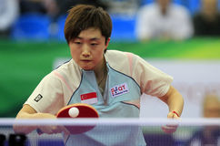FENG Tianwei (SIN) Stock Photos