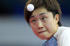 FENG Tianwei (SIN) Royalty Free Stock Photography
