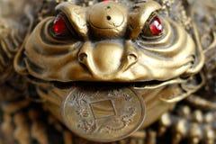 FengShui - groda med myntet Royaltyfri Foto