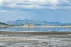 Fenicotteri nel lago Magadi, Rift Valley, Kenya immagine stock libera da diritti