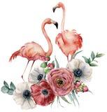 Fenicottero dell'acquerello con il mazzo del ranunculus Uccelli esotici dipinti a mano con l'anemone, le foglie dell'eucalyptus e Fotografia Stock