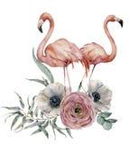 Fenicottero delle coppie dell'acquerello con il mazzo dell'anemone e del ranunculus Uccelli esotici dipinti a mano con le foglie  Immagini Stock