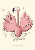 Fenicottero di yoga Fotografia Stock Libera da Diritti
