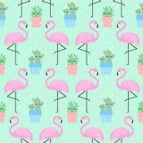 Fenicottero rosa con il cactus illustrazione di stock