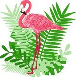 Fenicottero rosa sui precedenti delle foglie - illustrazione di vettore, ENV illustrazione vettoriale