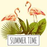 Fenicottero tropicale retro, annata delle foglie di ora legale di slogan Fotografie Stock