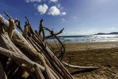 Feniglia plaża W Tuscany W letnim dniu Obraz Stock