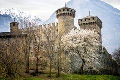 Fenis kasztel w Aosta dolinie, Włochy Zdjęcia Stock
