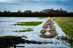 Fenland flooding and sky Stock Photography
