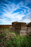 Fenland landscape in winter Royalty Free Stock Photo