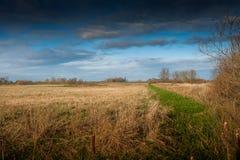Fenland-Landschaft und drastischer Himmel lizenzfreie stockfotos