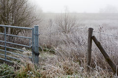 Fenland in Winter Royalty Free Stock Photography