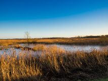 Fenlands of Suffolk uk Royalty Free Stock Photos