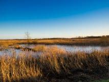 Fenlands uk Suffolk Zdjęcia Royalty Free