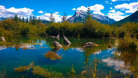 Fenlands wetland banff with mountain Stock Images