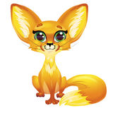 Fennec Fox 免版税库存照片
