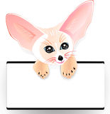 Fennec with frame Stock Photography