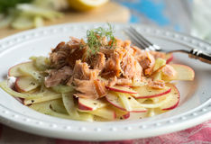 Fennel and Apple Salad with Salmon Royalty Free Stock Photography