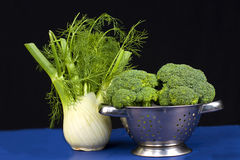 Fennel & Broccoli Royalty Free Stock Images