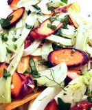 Fennel and carrot salad. With lemon dressing and parsley Stock Photography