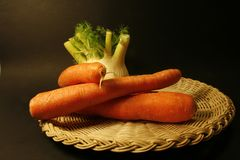 Fennel and carrots Royalty Free Stock Images