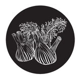 Fennel in a circle monochrome.  Royalty Free Stock Images