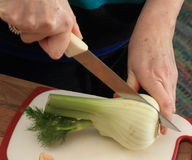 Fennel Cut In Half Stock Photos