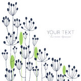Fennel floral card. Hand drawn vector flower card template with space for your text. For greeting cards, invitations, wallpapers, backgrounds Royalty Free Stock Images