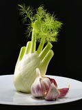 Fennel and Garlic Stock Image